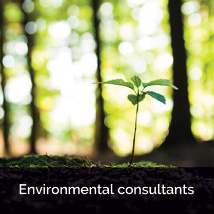 Ascend Environmental Consultants
