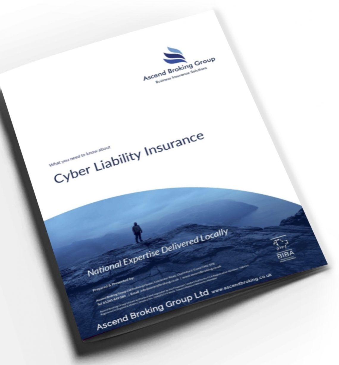 Cyber liability insurance explained our free ebook ascend cyber liability insurance explained our free ebook reheart Choice Image