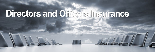 Why all businesses require Directors and Officers insurance