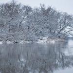 Winter Risk Management